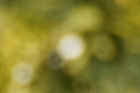 october08/18250boktel80.jpg