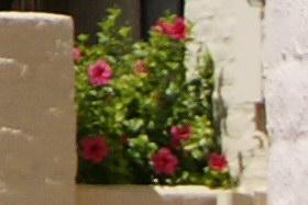June2009/1855cn80.jpg