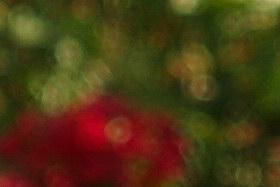 october08/20mmbok28.jpg