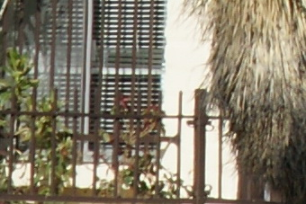 March2010/300ssm11cn.jpg