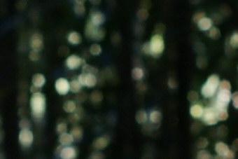 Jan2010/35mmbokf56.jpg