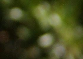 october08/70300ffbokw45.jpg