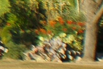 May2010/80200wf11cn.jpg