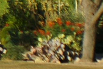 May2010/80200wf45cn.jpg