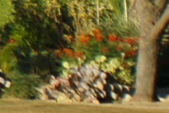 May2010/80200wf56cn.jpg