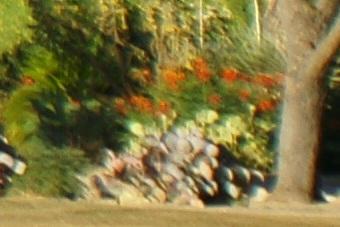 May2010/80200wf80cn.jpg