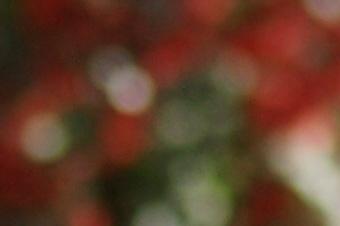 Janfeb2011/cz24bok20.jpg