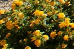 2008/min24cr80.jpg