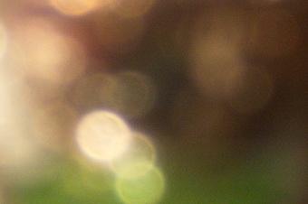 endof2011/s816bok16f56.jpg