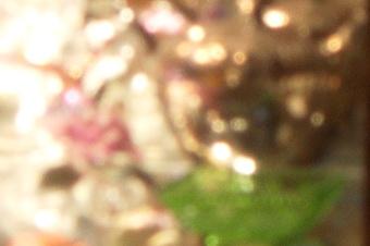 endof2011/s816bok8f80.jpg
