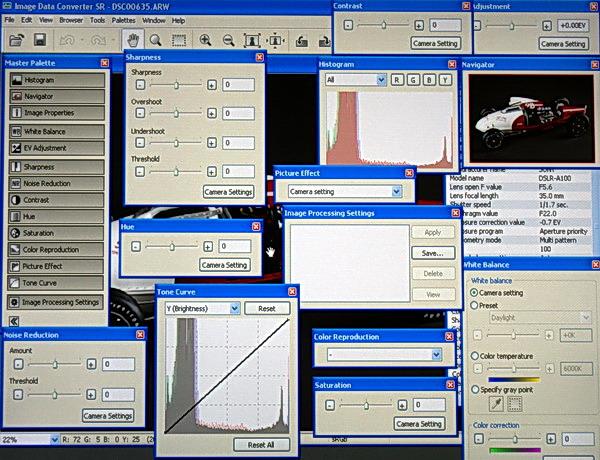 sonya100rawscreen.JPG